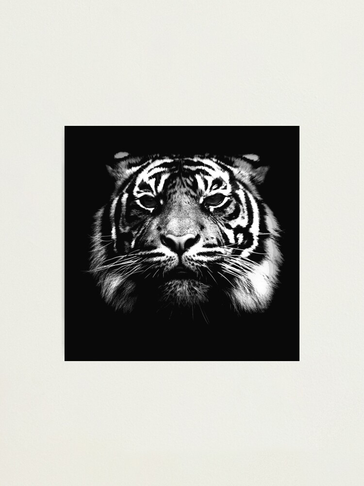 Alternate view of Illustrated Tiger  Photographic Print