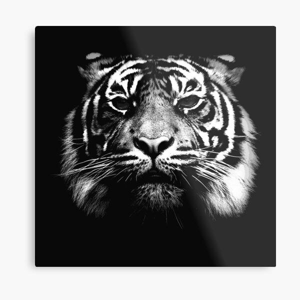 Illustrated Tiger  Metal Print