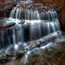 Waterlogged by Chintsala