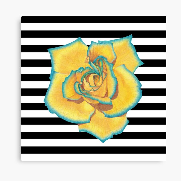 Yellow and Turquoise Rose on Stripes Canvas Print