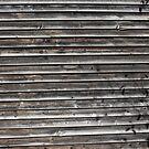 Grey Wood Siding by Logan McCarthy