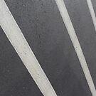 Crosswalk 1 by Logan McCarthy