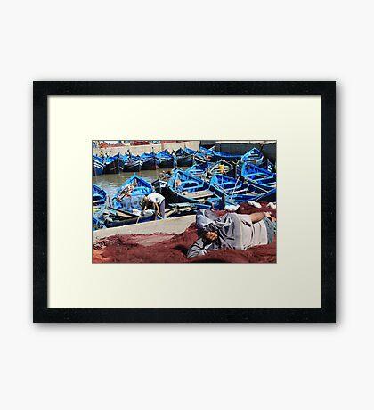 The day's catch (Essaouira, Morocco) Framed Print