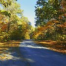 Colorful Country Road by James Brotherton