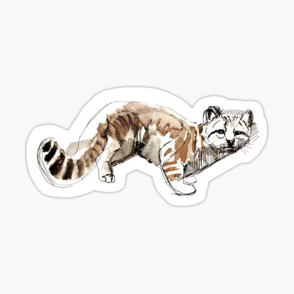 Gato andino (AGA) Pegatina