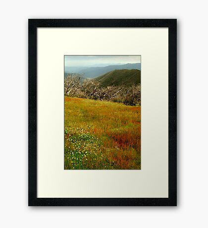 Colours Of The Victorian High Country Framed Print