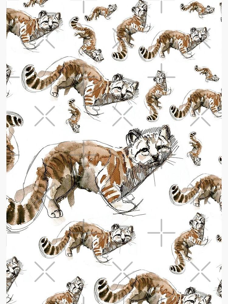 Gato andino (AGA) de belettelepink