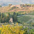 Tuscan Countryside by Tracy Riddell