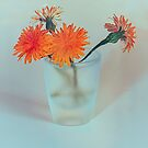 Orange Flowers by elenimac