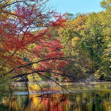 Autumn In New Jersey by lanrophot
