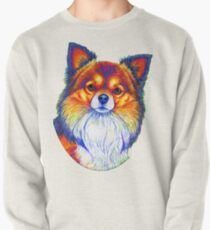 Colorful Long Haired Chihuahua Dog Pullover