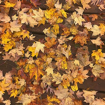 Late October Leaves 3 by bloomingvine