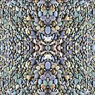 Mirrored Stones by Mike Solomonson