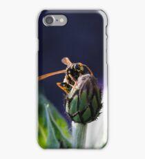 wasp on flower iPhone Case/Skin