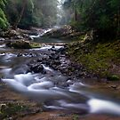 Allyn River Magic by Michael Howard