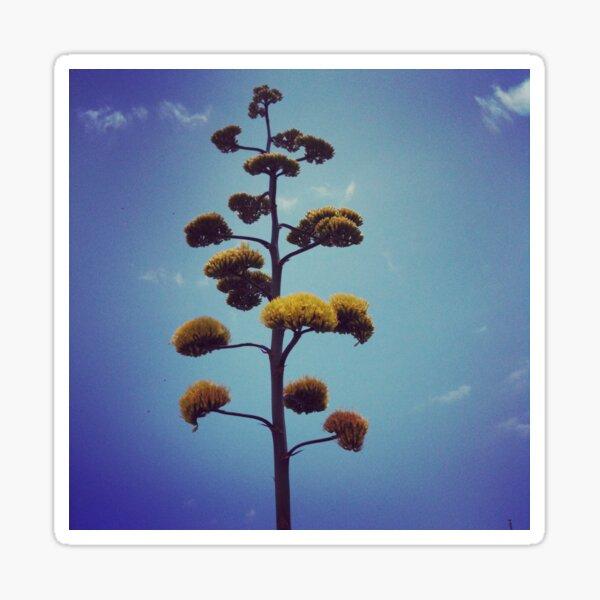 Yellow Yucca Bloom Sticker