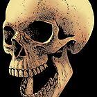 Schädel von Maurice Campobasso