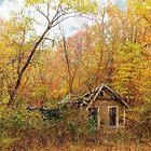Seasons Pass by FrankieCat