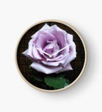 Blue Moon Rose im Schatten Uhr