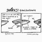 Sharks! - Eugene by lifeofsharks