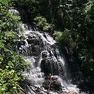 Issaqueena Falls by Bob Hardy