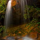 Cascading Light by Jennifer and Paul Cave