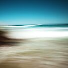 ocean play by wellman