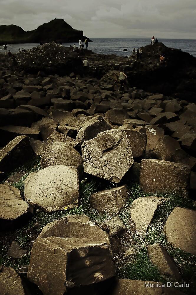 Giant Causeway, Ireland, Eire, North by Monica Di Carlo