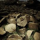 Giant Causeway, Ireland, Eire, North by Monica Di Carlo