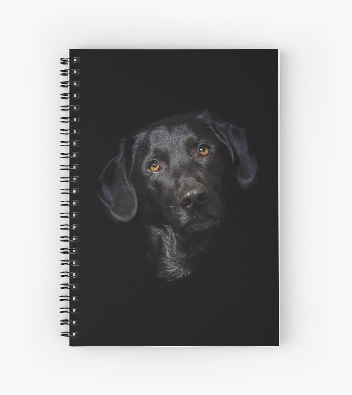 «Labrador Dog Design» de kudostees