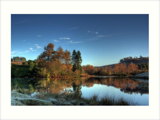 Autumn Reflections II by Craig Usher