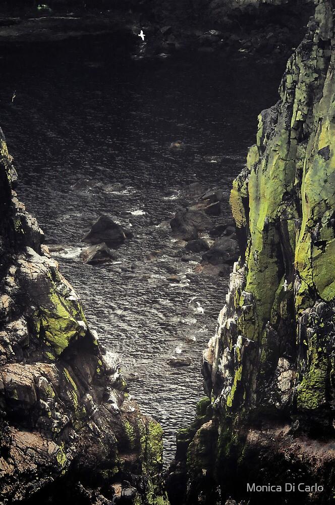 Rattlin island cliff, Ireland by Monica Di Carlo
