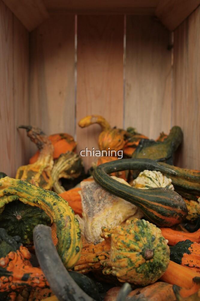 Farmer's Market 04 by chianing