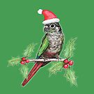 Christmas green cheeked conure  by Bwiselizzy