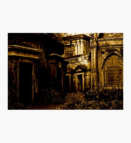 Catacombs at Highgate Cemetery (West) Photographic Print