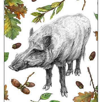 Wild boar with oak leaves by stasia-ch