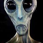 Alien Encounter by © Loree McComb