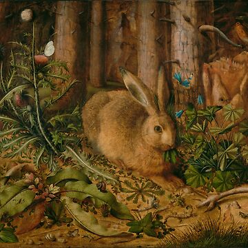 A Hare in the Forest by elaine226