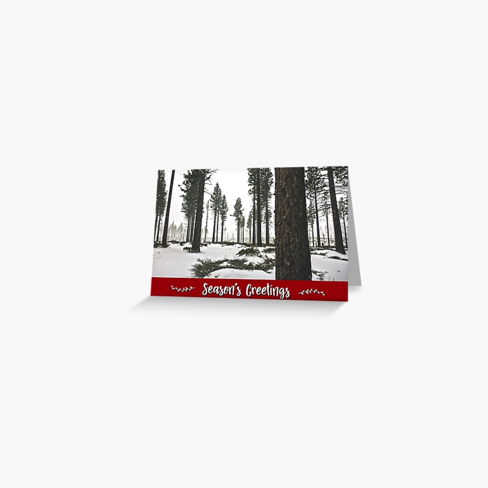 Winter Forest Holiday Card Greeting Card