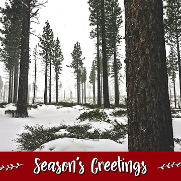 Winter Forest Holiday Card by JaredManninen