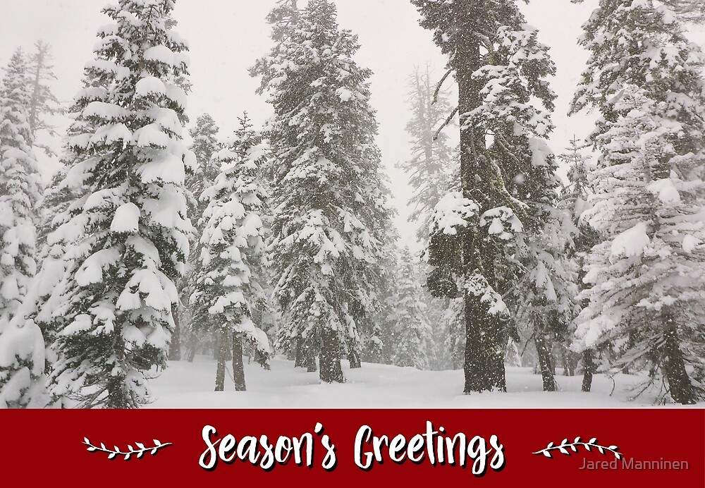 Snowy Forest Holiday Card by Jared Manninen