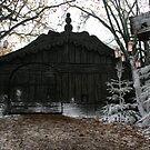 winter wonderland by Profo Folia