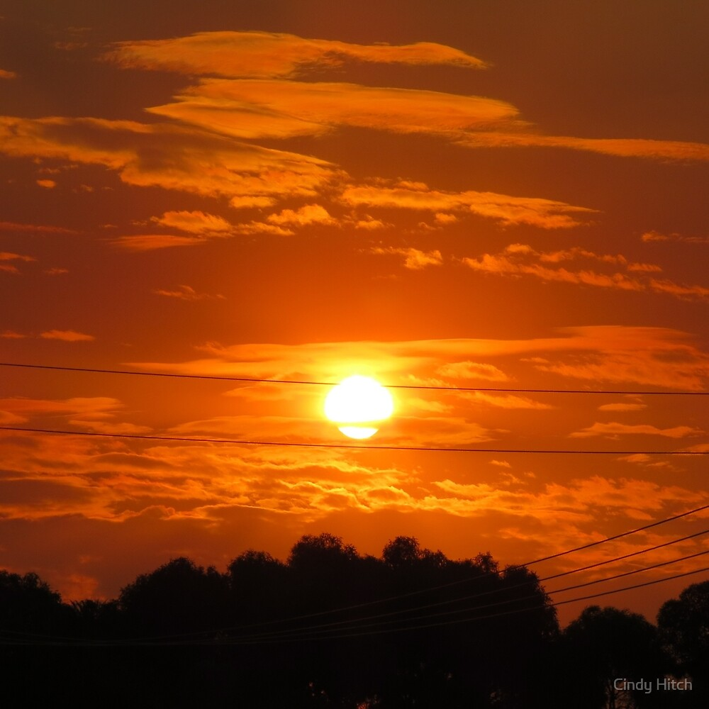Brilliant Sunset by Cindy Hitch