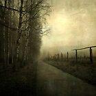 A gleam of light by Caterpillar