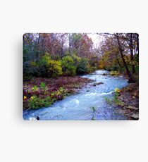 Arkansas Ozark Mountain Stream Canvas Print