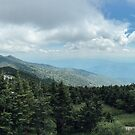 View of the Smoky Mountains from Mount Mitchell State Park by Adam Nixon