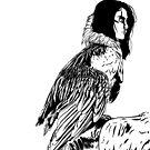 Bearded Vulture Harpy by uzisuzuki