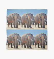 Painted Elephant in the Desert Scarf