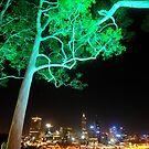 City lights by Penny Smith