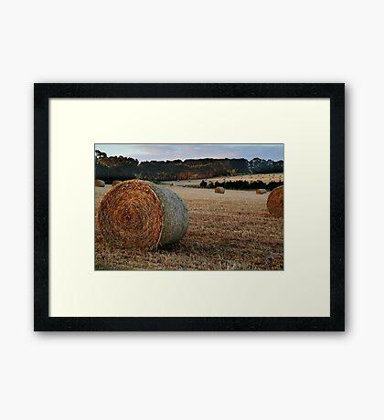 Making Hay,Fresh Water Creek Framed Print